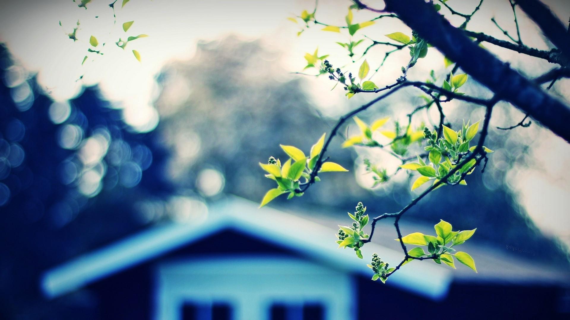 La casa efficiente mette al primo posto salute e comfort